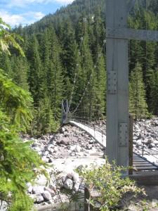 bouncy carbon river bridge